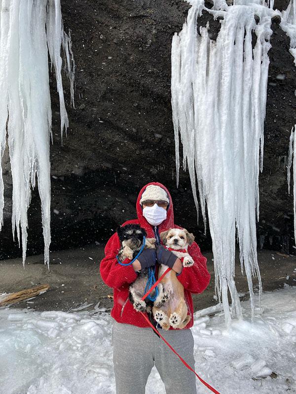 岩壁と氷柱と犬
